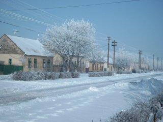 winter02-01
