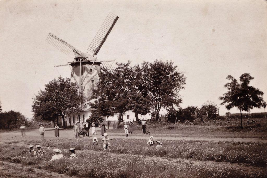 Die Windmühle in Lenauheim (aus dem Archiv HOG Lenauheim)